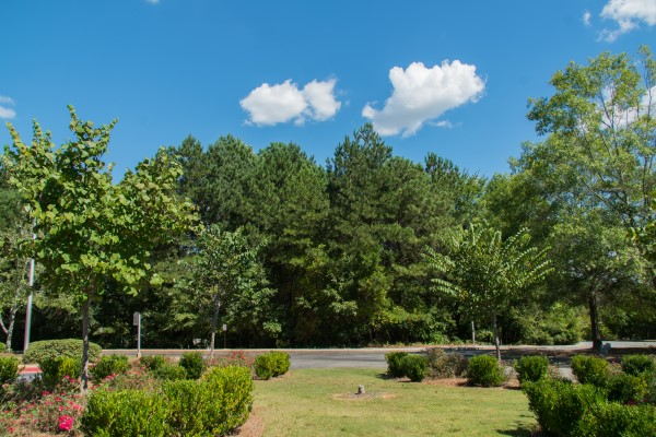 A view of the nature surrounding Riverwoods Behavioral Health